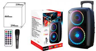 Колонка BIG RLS-2680 USB/MP3/FM/BT/TWS (290*230*460 / проводной микрофон) Черный
